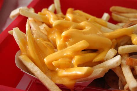 Have You Tried Cheese Fries? • Yummy Magazine