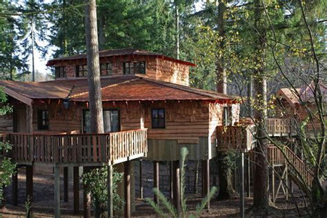 New luxury Treehouses at Elveden Forest - Center Parcs