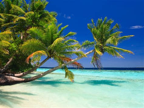 Indian Ocean Holidays 2016/2017 – Brilliant deals from