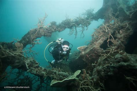 The Shipwrecks of Coron Bay - Snorkelling and Diving Site