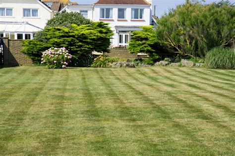 Mowed Garden Lawn Free Stock Photo - Public Domain Pictures