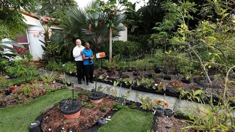 Ban on vegetable gardens stays, Florida's top court says