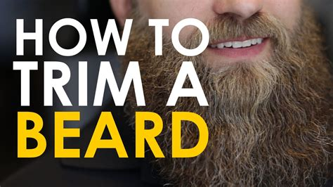 How to Trim Your Beard | The Art of Manliness